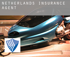 Netherlands  insurance agents
