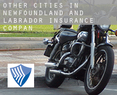 Other cities in Newfoundland and Labrador  insurance company