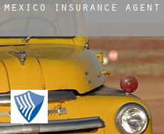 Mexico  insurance agents